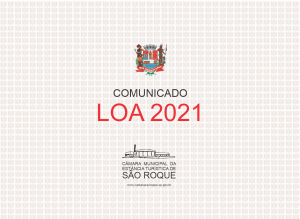 Audiência Pública LOA 2021